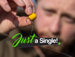 Just a single