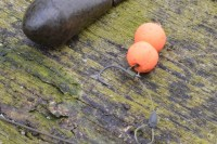 Zwei orange Pop Ups am Chod Rig