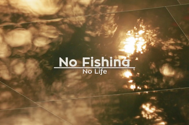 No fishing no life